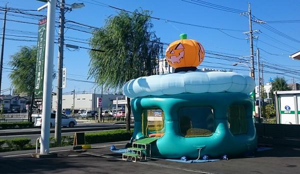 【季節物】かぼちゃ